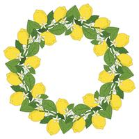 Tropische citrusvruchten citroen fruit met bloemen rond frame. Zomer kleurrijke achtergrond. Vector illustratie.