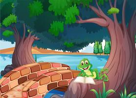 Een kikker die onder de boom naast een brug leest