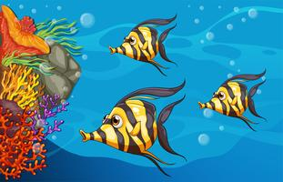 Onderwater