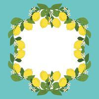 Kaartsjabloon met tekst. Tropisch citrusvruchtencitroenvruchten kader op uitstekende turkooise blauwe achtergrond. vector