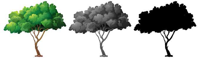 Set van boom ontwerp vector