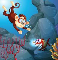 Een aap die in de oceaan duikt