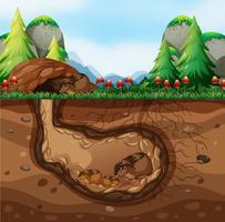 Een cavia-familie die onder de grond leeft