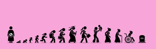 Vrouwelijke levenscyclus en verouderingsproces. vector