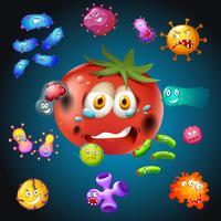 Verse tomaat met bacteriën vector