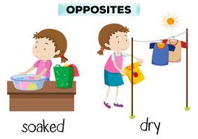 Engels tegenovergesteld woord doordrenkt en droog