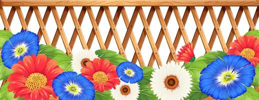 Colourfl bloeit dichtbij de houten omheining vector