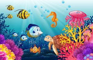 Scène met levens onder water