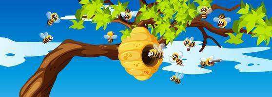 Bijen vliegen rond de bijenkorf