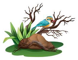 Een vogel aan de tak van een boom