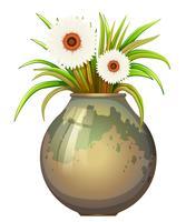 Een bloeiende plant in een grote pot vector