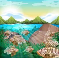 Oceaanscène met leeuwvissen onderwater vector