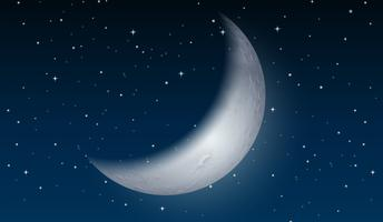 Een maan aan de hemel vector
