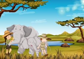 Dierenverzorger met olifant in de dierentuin