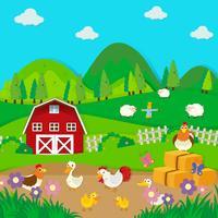 Kippen en eenden op de boerderij vector