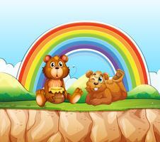 Beren en regenboog vector
