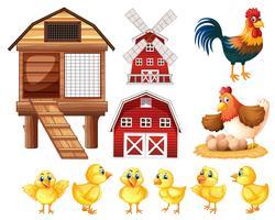 Kippen en cicken coops vector