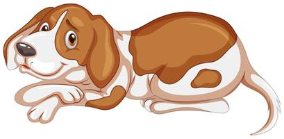 Bruine hond op witte achtergrond vector