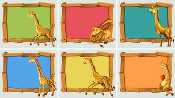 Houten frame ontwerp met giraffe vector