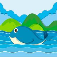 Blauwe vinvis die in de oceaan zwemt