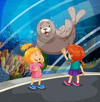 Twee meisjes die zeehond het zwemmen bekijken vector