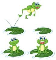 Groene kikkers die op waterleliebladeren springen