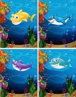 Haaien zwemmen onder de zee