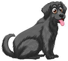 Hond vector
