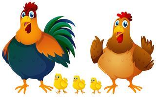 Kippenfamilie met drie kuikens vector