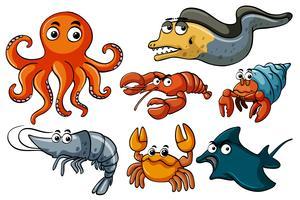 Verschillende soorten zee-dieren in het wild vector