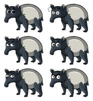 Tapir met verschillende emoties
