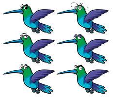 Kolibries met verschillende emoties vector