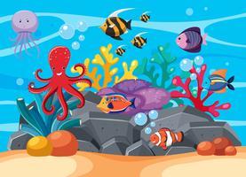 Onderwaterscène met vele zeedieren vector