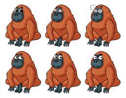 Urangutan met verschillende emoties