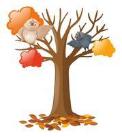 Twee uilen op de boom