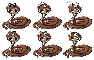 Cobra slangen met verschillende emoties
