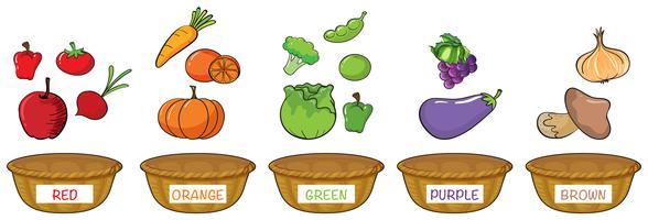 Verschillende kleuren groenten en fruit vector