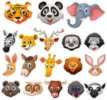 Verschillende gezichten van wilde dieren vector