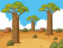 Scène met lange bomen in de woestijn