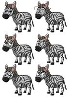 Zebra met verschillende uitdrukkingen