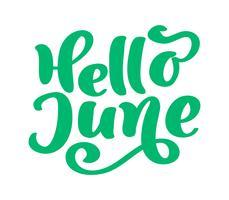 Hallo juni belettering vector tekst afdrukken. Zomer minimalistische illustratie. Geïsoleerde kalligrafie zin op witte achtergrond