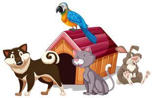 Verschillende soorten huisdier rond het huis vector