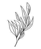 Hand getrokken moderne bloemen tekenen en schets bloemen met lijntekeningen, vector illustratie bruiloft ontwerp voor t-shirts, tassen, voor posters, wenskaarten, geïsoleerd op witte achtergrond