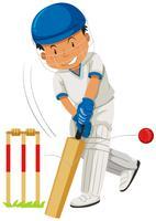 Cricket speler raakt bal met vleermuis