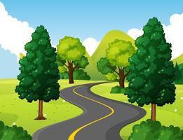 Nationaal park met lege weg