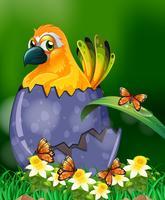 Geel vogel uitbroedend ei in tuin vector