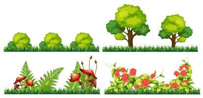 Set van decoratie plant vector