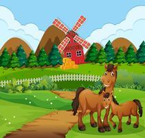 Paard bij het landbouwbedrijflandschap vector