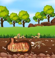 Slangen leven in de grond