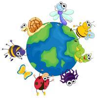 Verschillende bugs over de hele wereld